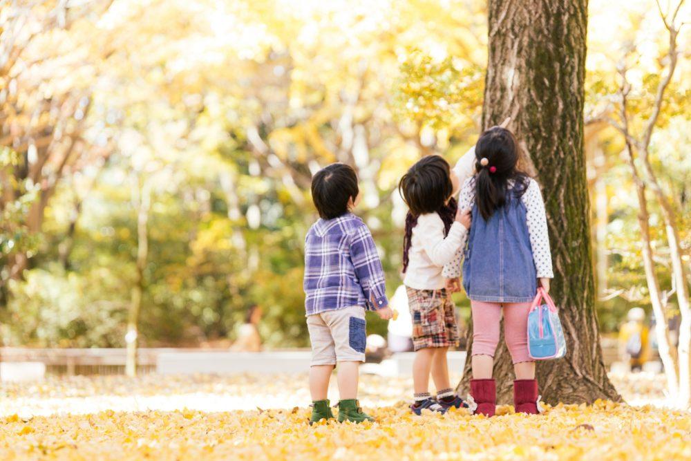 親子で秋を楽しもう!おすすめの室内遊び・外遊び